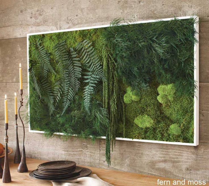 Framed Preserved Jungle Wall