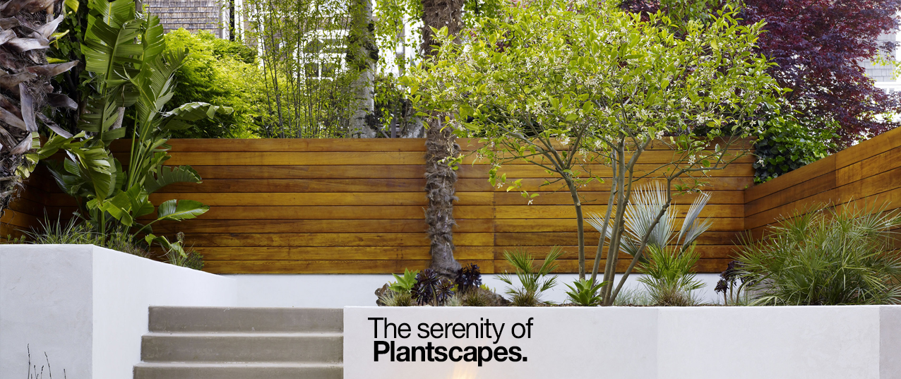 Plants Natural Plantscape Desireign Cover