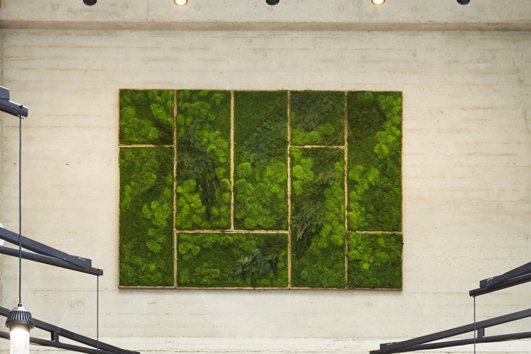 Framed Green Wall