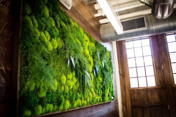 Framed Preserved Moss Wall