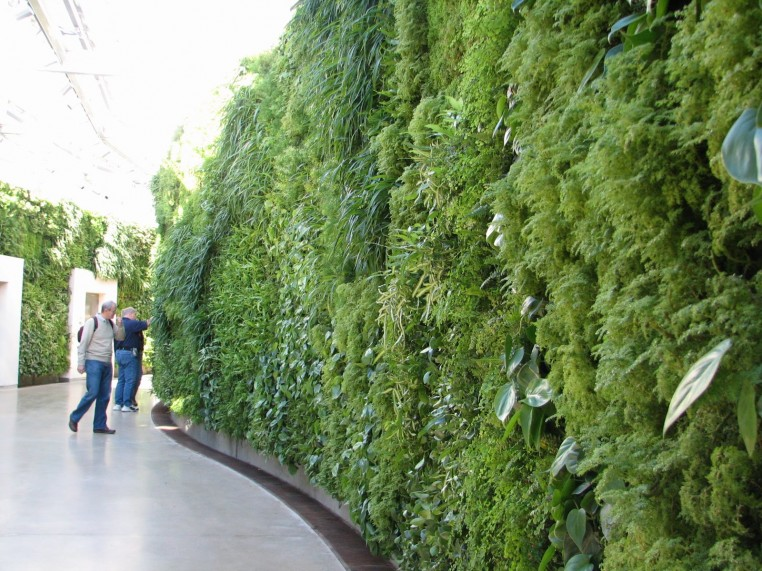 Curve Natural Green Wall