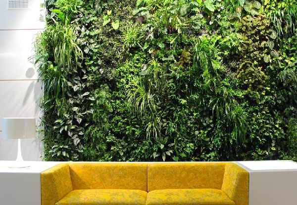 Natural Green Wall Living room