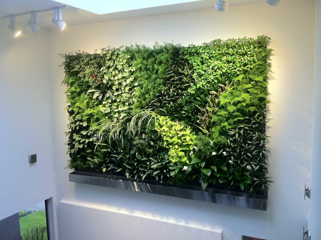 Natural Green Wall patch