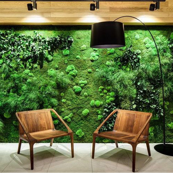 Natural green wall uae